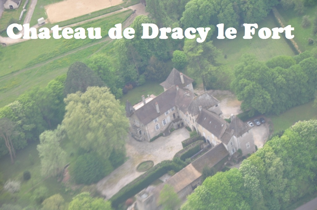 Chateau de Dracy le Fort