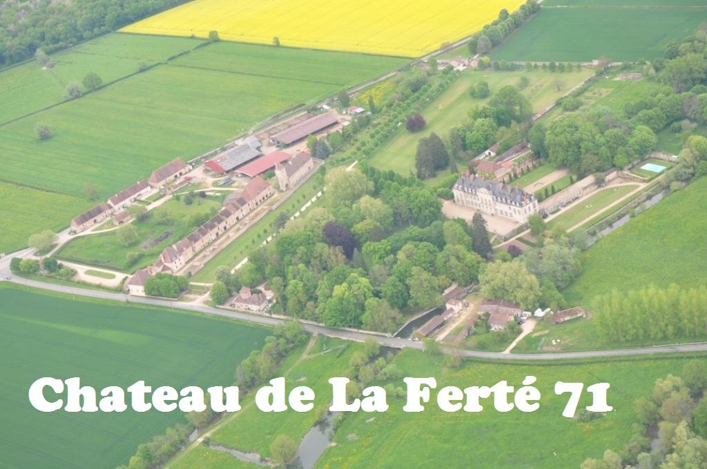 Chateau de la Ferté