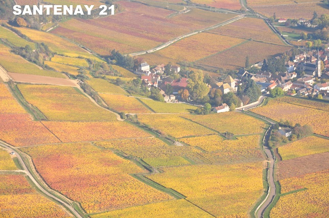 0162 Santenay